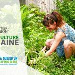 offre d'emploi agriculture urbaine